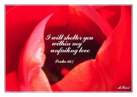 Abiding in His Love... (Picure taken from http://www.scatterthestones.co.uk/flourish-in-gods-love-for-you/)